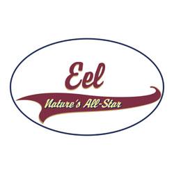 Eel T-Shirts