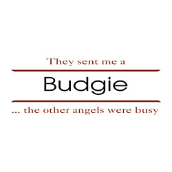 Budgie T-Shirts
