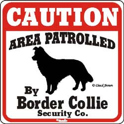 Sign: Border Collie