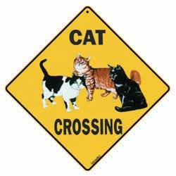 Sign: Cat
