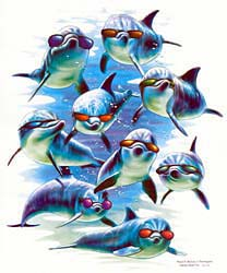Dolphin Tee Shirt Design - Cool Dolphins with Sunglasses