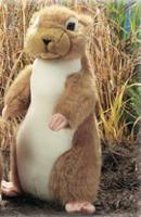 Plush Animal: Prairie Dog