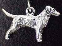Labrador Retriver Charm
