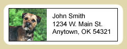 5220 1802 Address Labels: Border Terrier