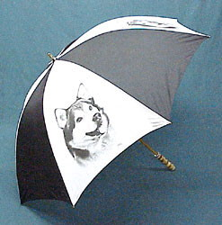 Umbrella: Alaskan Malamute