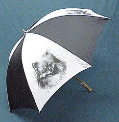 5820 Umbrella: Pomeranian