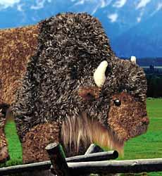 Plush Animal: Buffalo