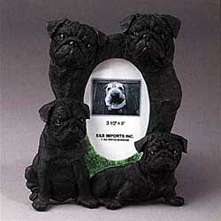 Black Pug Picture Frame