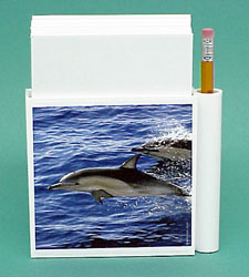 Dolphin Note Holder