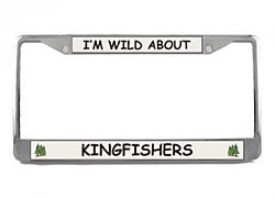 Kingfisher License Plate Frame