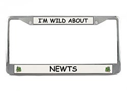 Newt License Plate Frame