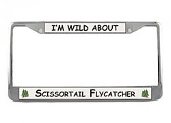 Scissor Tailed Flycatcher License Plate Frame