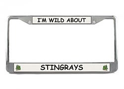Stingray License Plate Frame