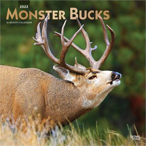Monster Bucks Calendar 2013