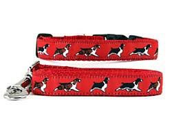 Springer Spaniel Collar & Leash