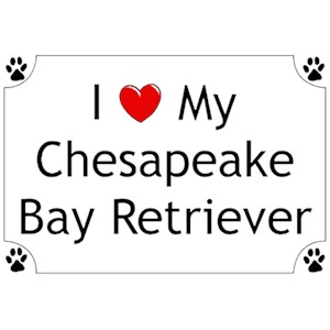 Chesapeake Bay Retriever T-Shirt - I love my