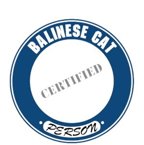 Balinese Cat T-Shirt - Certified Person