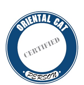 Oriental Cat T-Shirt - Certified Person