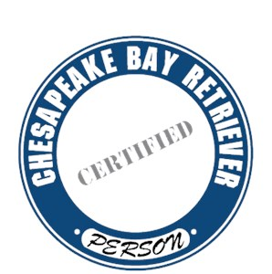 Chesapeake Bay Retriever T-Shirt - Certified Person