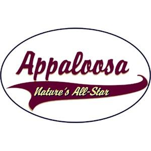 Appaloosa Horse T-Shirt - Breed of Champions