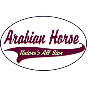 Arabian Horse T-Shirt - Breed of Champions