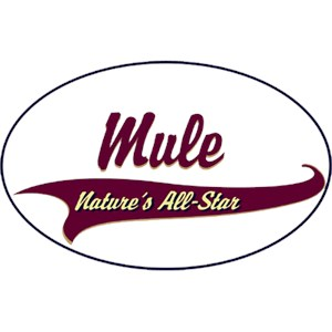 Mule T-Shirt - Breed of Champions
