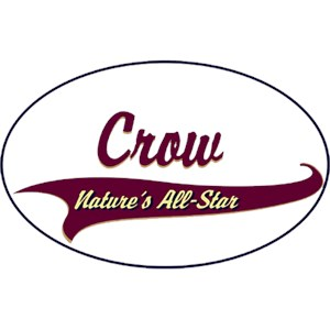 Crow T-Shirt - Breed of Champions