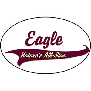 Eagle T-Shirt - Breed of Champions