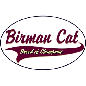 Birman Cat T-Shirt - Breed of Champions