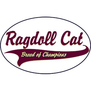 Ragdoll Cat T-Shirt - Breed of Champions