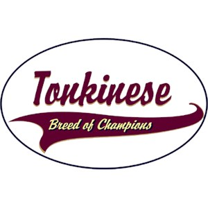Tonkinese Cat T-Shirt - Breed of Champions