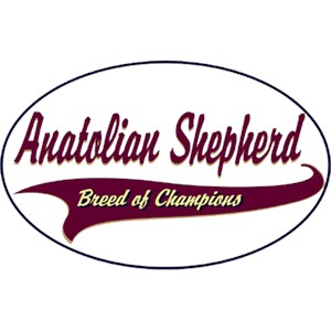 Anatolian Shepherd T-Shirt - Breed of Champions