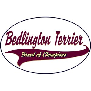 Bedlington Terrier T-Shirt - Breed of Champions