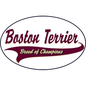 Boston Terrier T-Shirt - Breed of Champions