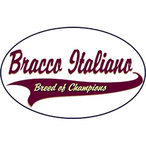 Bracco Italiano T-Shirt - Breed of Champions