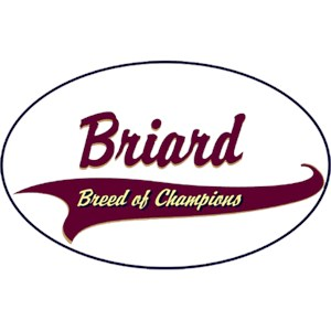 Briard T-Shirt - Breed of Champions