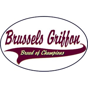 Brussels Griffon T-Shirt - Breed of Champions