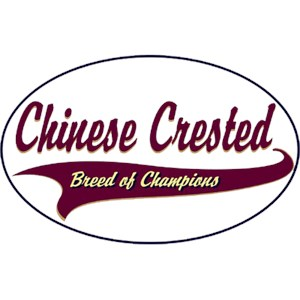 Chinese Crested T-Shirt - Breed of Champions