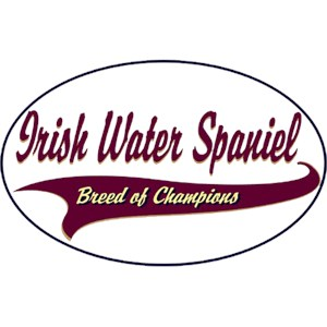 Irish Water Spaniel T-Shirt - Breed of Champions