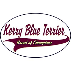 Kerry Blue Terrier T-Shirt - Breed of Champions