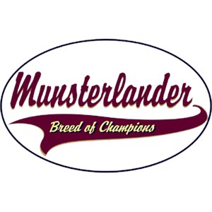 Munsterlander T-Shirt - Breed of Champions