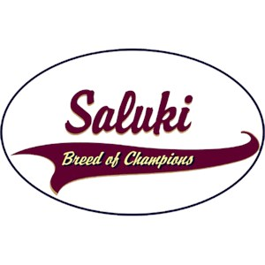 Saluki T-Shirt - Breed of Champions