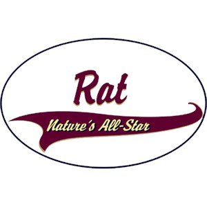Rat T-Shirt - Breed of Champions