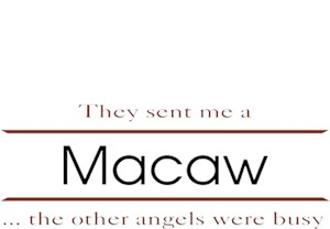 Macaw T-Shirt - Other Angels