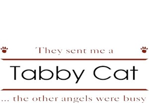 Tabby Cat T-Shirt - Other Angels