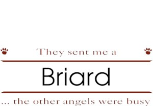 Briard T-Shirt - Other Angels