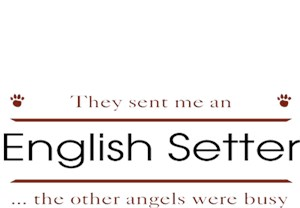English Setter T-Shirt - Other Angels