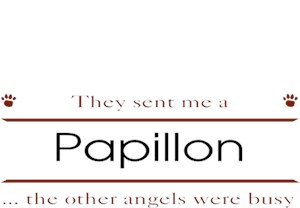 Papillon T-Shirt - Other Angels