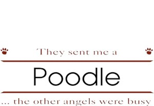 Poodle T-Shirt - Other Angels