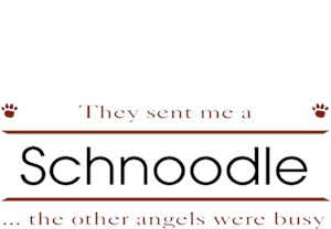 Schnoodle T-Shirt - Other Angels